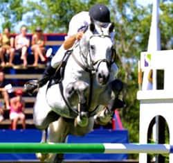 equestrian-homes-las-vegas