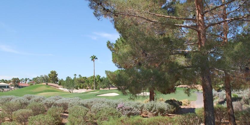 Canyon-Gate-Country-Club-home-8649-Robinson-Ridge