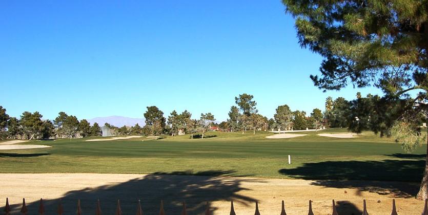 las-vegas-estate-home-18-wild-dunes-court