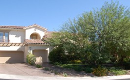 Summerlin-home-11554-Trevi-Fountain
