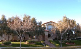 las-vegas-estate-home-1409-iron-hills