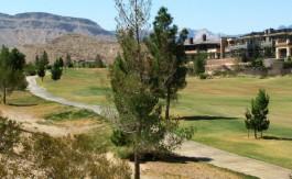 las-vegas-estate-home-58-meadowhawk