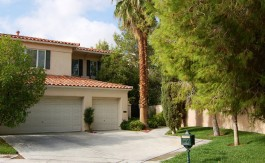 las-vegas-estate-home-9057-opus-drive